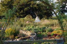 Organic Annual Vegetable Garden
